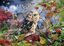 Casse-tête 1000 mcx - Owls in the Moonlight