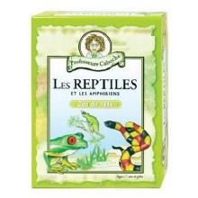 Professeure Caboche - Les reptiles et les amphibiens
