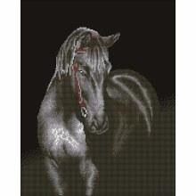 Diamond Dotz - Midnight Stallion