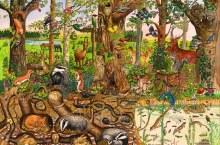 Casse-tête, 48 mcx - La forêt
