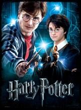 Casse-tête/Poster 3D, 500 mcx - Harry potter