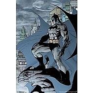 Batman Cape Poster