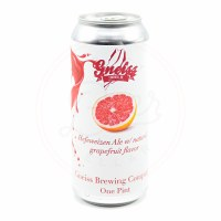 Gneiss Shandy - 16oz Can