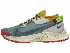 Nike Pegasus Trail 2 GORE-TEX