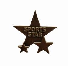 Metal Sports Day Badge