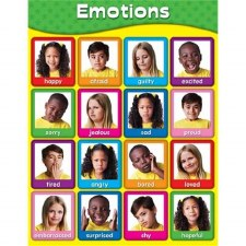 Poster Emotions