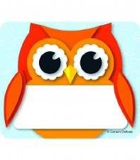 Name Tags - Colourful Owls