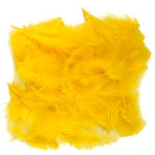 Feathers Yellow