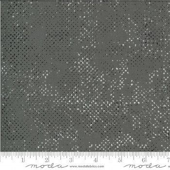 Spotted Quotation Graphite