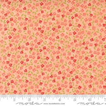 Strawberries Rhubarb Blossom A