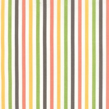 Prairie Stripe Multi White