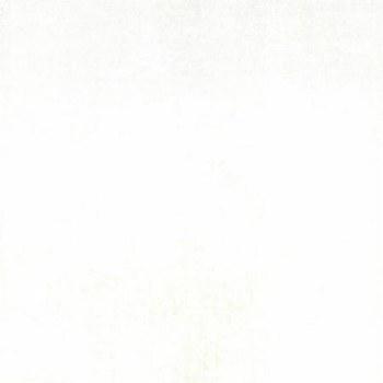 Grunge Basics White