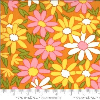 A Blooming Bunch Daisy Cheddar