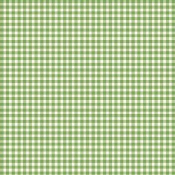 Beautiful Basics Check Green