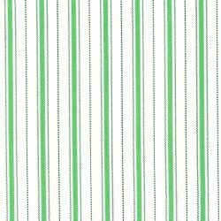 Animal Quackers Stripe Green