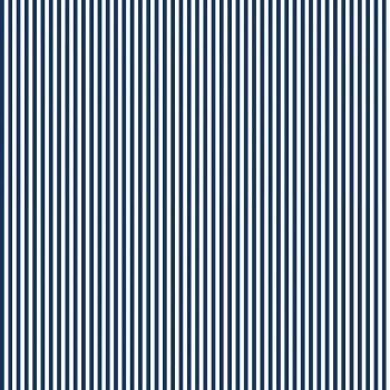 Stripe Navy White 1/8th Inch