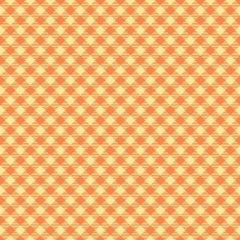 Bee Basics Gingham Orange