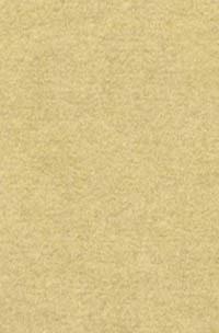 Wool Felt - Beach Sand