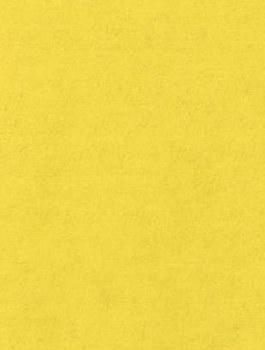 Wool Felt - Eternal Sunshine