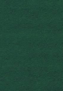 Wool Felt - Hunter Green 12x18