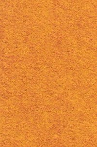 Wool Felt - Butternut Squash 12x18