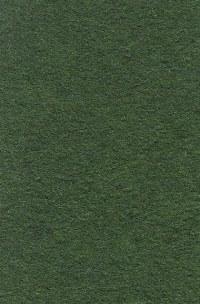 Wool Felt - Grassy Meadow
