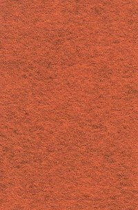 Wool Felt - Pumpkin Spice 12x18