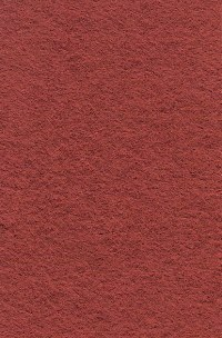 Wool Felt - Copper