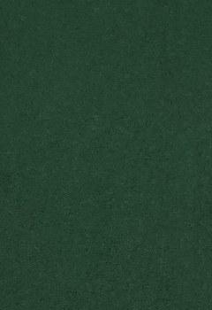 Wool Felt - Evergreen