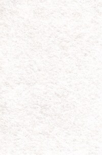 Wool Felt - Antique White 12x18