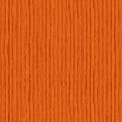 French Press Stripe Orange
