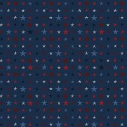 American Rustic Tiny Stars Blu