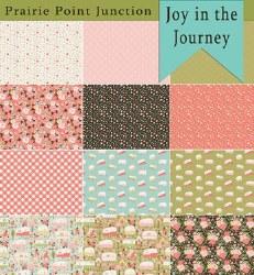 Joy in the Journey 12 FQs