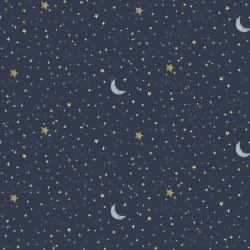 Koala Me Crazy Night Sky Midnight