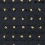 Spirit of America Words Stars Navy