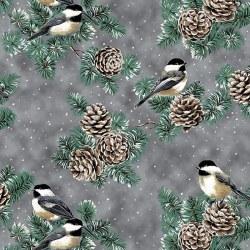 First Snowfall Bird/Pine Gray