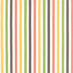Prairie Stripe Multi White