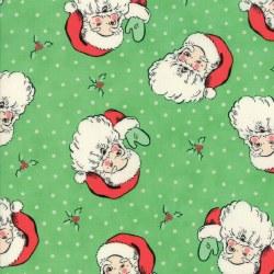 Swell Christmas Santa Green