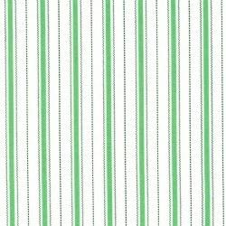 Animal Quackers Stripe Green