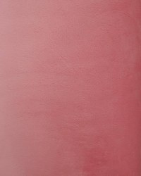 Minky Silky Solid Coral