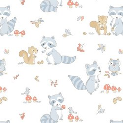 Minky Raccoon White