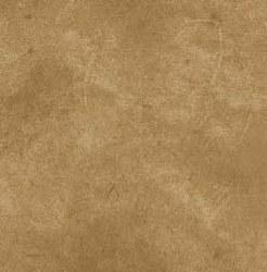 Suede Textures Caramel