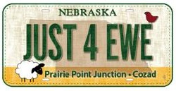 License Plate Mini - JUST4EWE