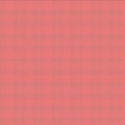 Set Sail America Gingham Red
