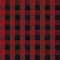 Plaids Buffalo Check Red