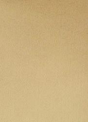 Wool Felt- Euphoric Gold 12x18