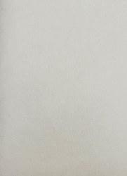 Wool Felt - Angel Wings 12x18