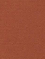 Wool Felt - Gold Ensembl 12x18