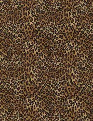 Leopard Tiny Brown Black