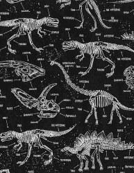 Dino Skeletons Glow intheDark